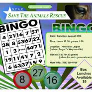 First Annual Bingo Day!